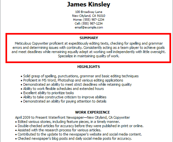 How To Write A Compelling Summary Statement In Resumes Resume